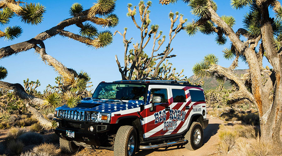 Big Horn Hummer in Joshua Tree Forest