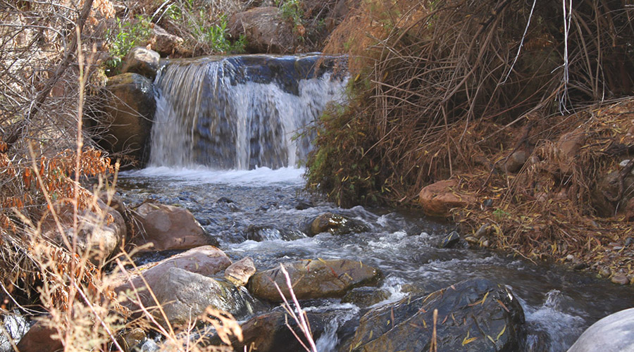 Grand Canyon Diamond Creek Waterfall