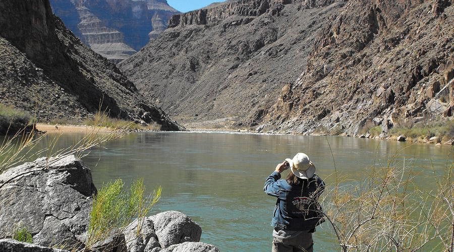Grand Canyon Diamond Creek river