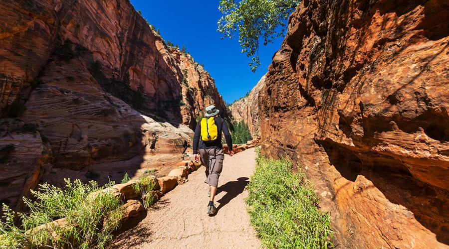 Loan Hiker on trails at Zion National Park
