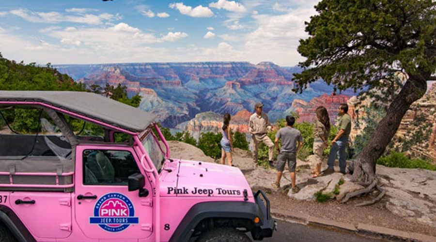 Pink Jeep Tourist at Lookout Point Grand Canyon South