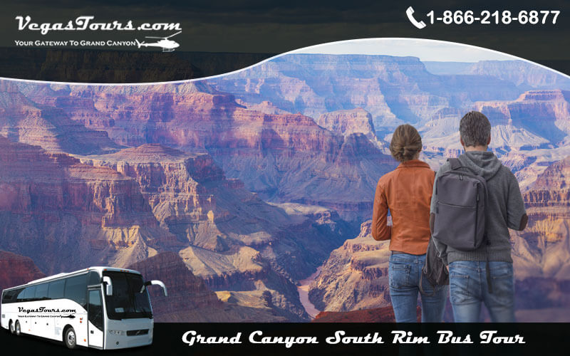 How to Choose The Best Grand Canyon South Rim Tours